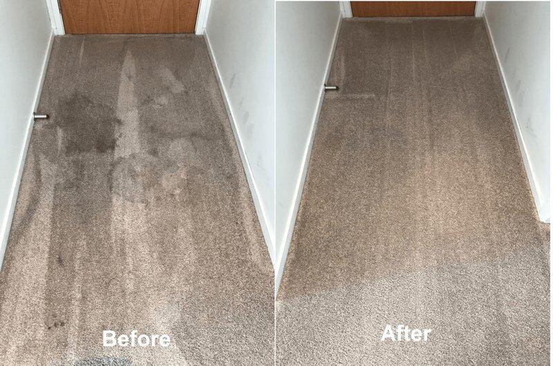 Orewa carpet cleaner